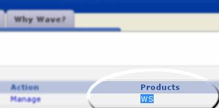WS type example