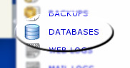 Databases manager link example